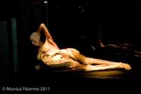 Body Worlds - Gunther von Hagens