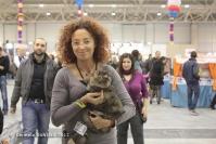 Super Cat Show 2012 (52)