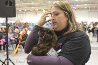 Super Cat Show 2012 (49)