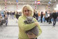 Super Cat Show 2012 (48)