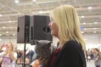 Super Cat Show 2012 (51)