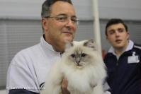Super Cat Show 2012 (38)