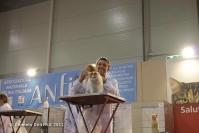 Super Cat Show 2012 (57)