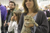 Super Cat Show 2012 (20)