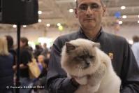 Super Cat Show 2012 (33)