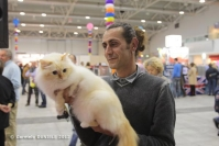 Super Cat Show 2012 (43)