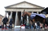 Ana - Manifestazione Pantheon-23