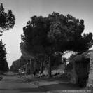 Via Appia - Anni '50